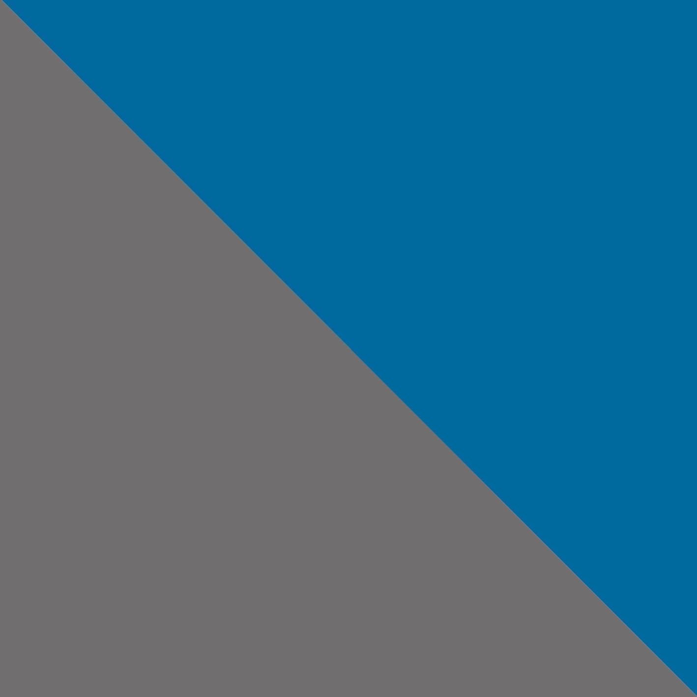 Grigio Scuro/Blu